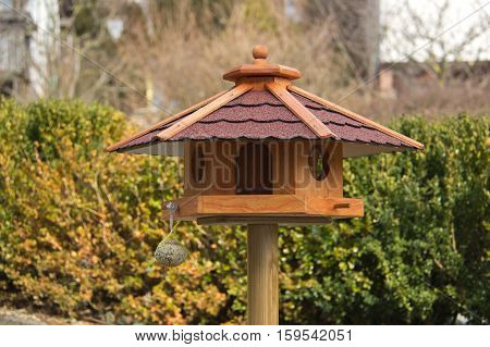 Bird box / Bird houses and feeders in the park