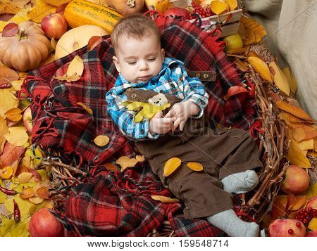 autumn little boy lie on plaid blanket, yellow fall leaves, apples, pumpkin and decoration on textile