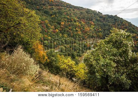 Autumn Landscape In Gorge Of Louise On Peloponnese In Greece