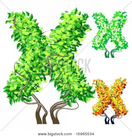 Vektor-Illustration eine zusätzliche detaillierte Baum Alphabet Symbole. Leicht abnehmbare Krone. Zeichen x