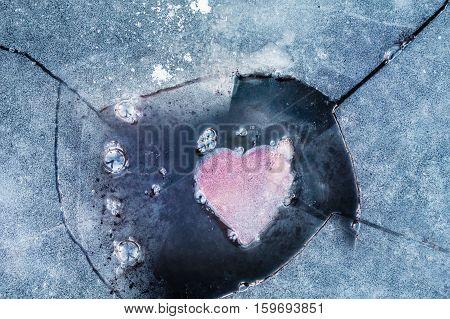Last love impulse in an iced heart