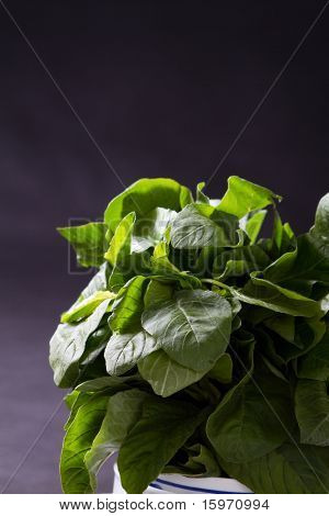 green leafy vegetable over black background