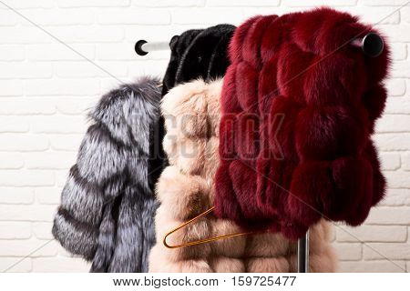 Fashionable Fur On Hangers