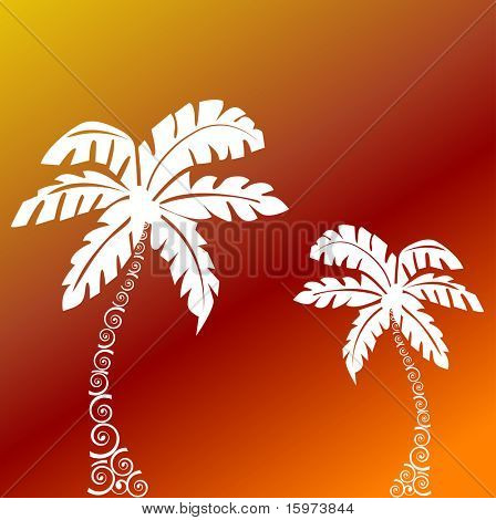 palm trees with funky tree trunks vector