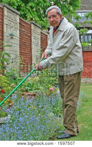Senior Citizen In The Garden