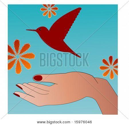 hand releasing humming bird - freedom concept