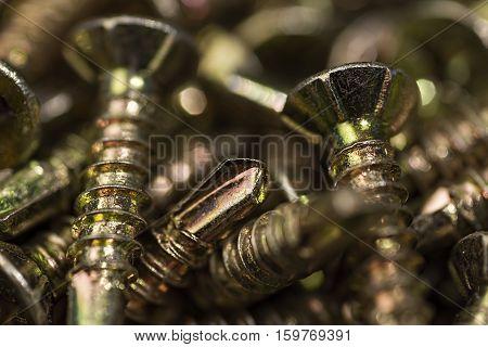Golden Screws Macro Close Up. Background Pattern.