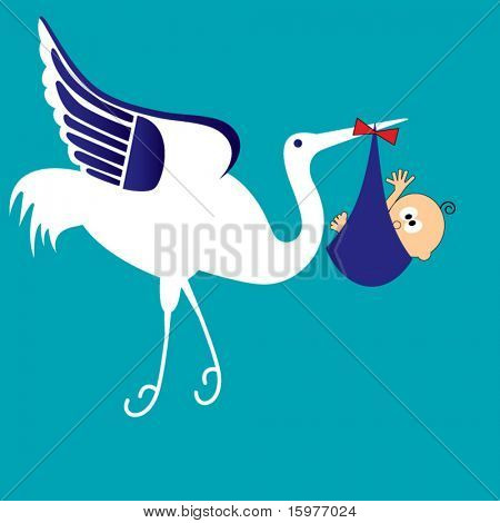 stork with baby boy