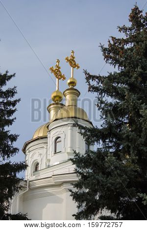 dome of the Orthodox church with crosses
