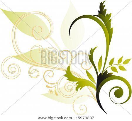 foliage with vine