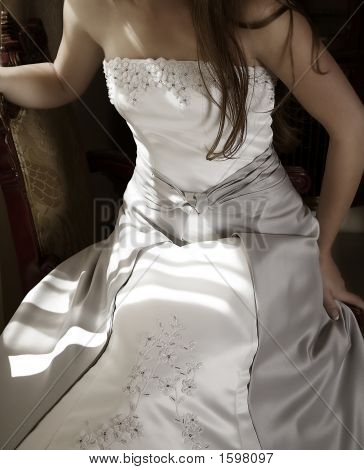 Beautiful Bride In Silver Dress In Natural Light