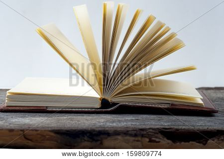 Close-up of open book. Copy space for text. Back to school.