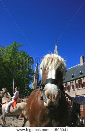 Ring, Reiten in den Niederlanden