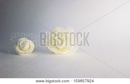Two roses on Background. Gradient grey. Place for text.