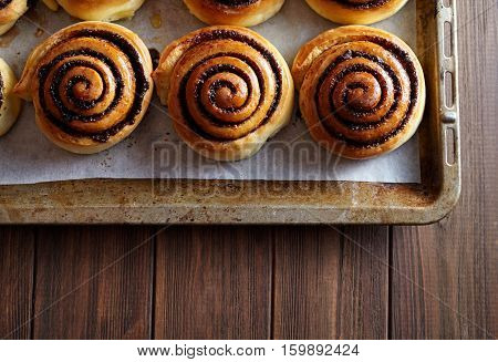 Freshly baked cinnamon rolls buns with cocoa and spices on a metal a baking sheet. Close-up. Top view. Kanelbulle swedish pastry dessert. Christmas baking pastry.