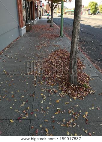 A sidewalk in downtown Prineville in Central Oregon covered with fallen leaves on a fall afternoon.