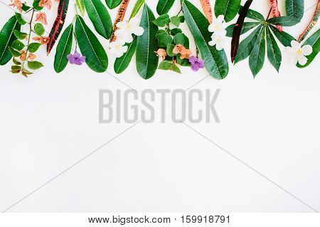 red and green leaf pattern on white background. flat lay header