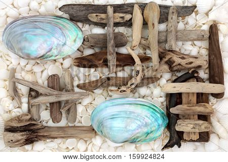 Seashell and driftwood abstract background with mother of pearl river mussel shells and assorted white seashells.