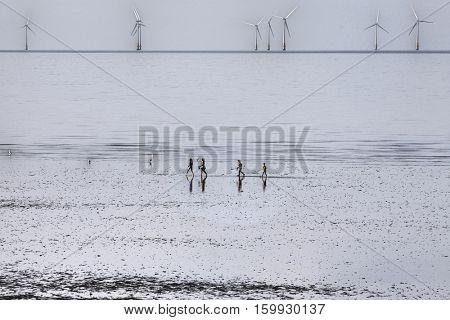 People running on beach, wind farm in distance