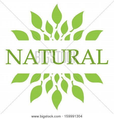 Natural concept image with text and leaves symbols.