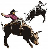 image of brahma-bull  - Illustration of a rodeo cowboy riding a bull - JPG