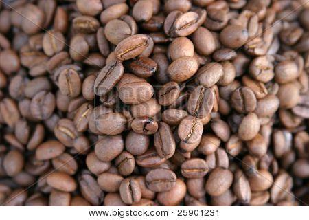 unground coffee beans