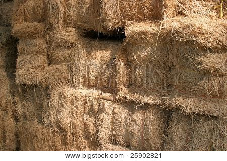 bails of hay with a hay hook