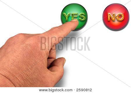 Choose Yes