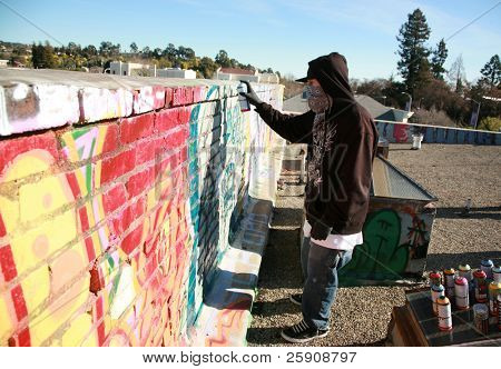 "an unidentifiable person spray paints graffitti on ""his own roof"" so to avoid police problems for destroying property"