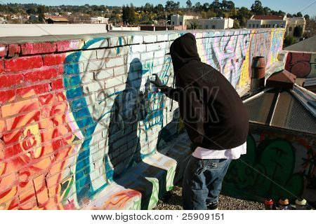 "an unidentifiable person spray paints graffiti on ""his own roof"" so to avoid police problems for destroying property"