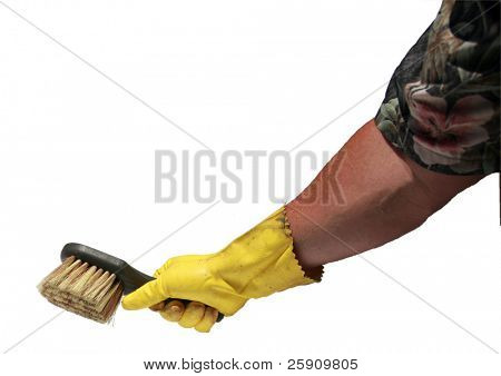 an isolated human arm wears a hawaiian shirt, a yellow rubber glove and scrub brush, with room for your text