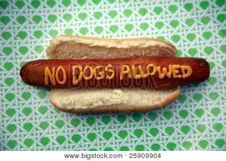 "Hot Dogs with Words and Slogans written in Yellow Mustard ""no dogs allowed"""