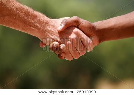 Caucasian male and african american male handshake outside