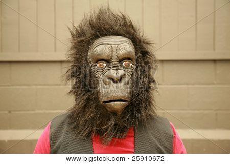 un modelo masculino viste un traje de gorila cabeza a petición del fotógrafo