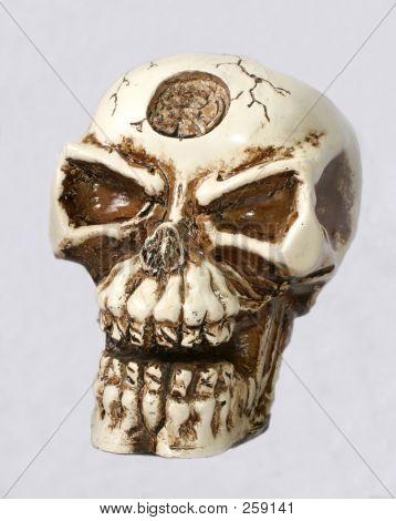 Skeleton Head Color F