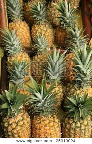 pineapples for sale at a roadside stand on maui hawaii