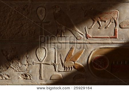 Egyptian Hieroglyphs in the temple of Queen Hapshepsut at Deir el-Bahri near Luxor (Thebes), Egypt