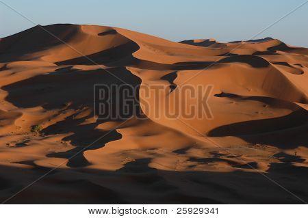 Sand dunes of Erg Chebbi in the Sahara Desert near Merzouga, Morocco.