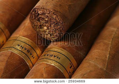 Havana cigars texture