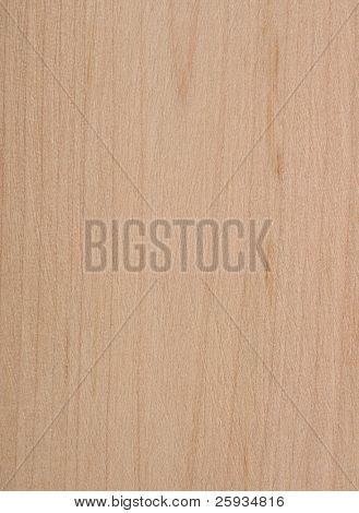 Hazel wood texture