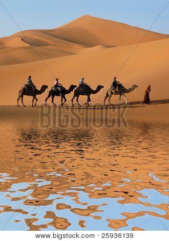 Kamel Karawane entlang gehen, entlang dem See des Sahara Wüste, Marokkos.