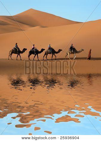 Kamel Karawane durch die Sanddünen in der Sahara, Marokko.