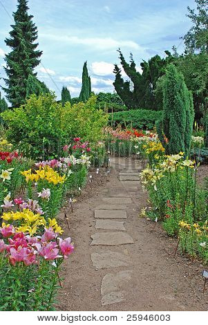 Beautiful botanical garden with daylily, stone path and many plant species