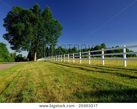 A White Horse Paddock Fence In The Countryside With Blue Sky