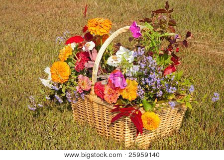 Flowers and foliage in brilliant fall colors in a wicker basket against faded fall grass background