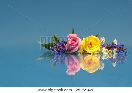 Beautiful, vibrant flowers against bright blue with a reflection with copy space