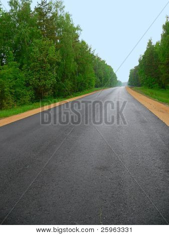 Clear new road through wood