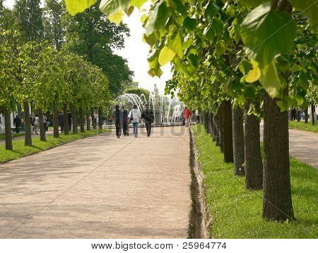Park avenue in Peterhof, St.Petersburg, Russia.