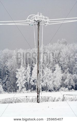 Frost crystals on Power Lines