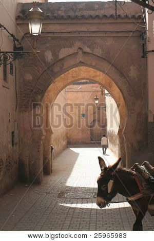 Doorway in Morroco city Marakesh with donkey
